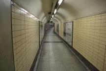 tube13
